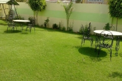 green view 12